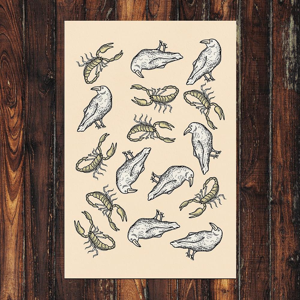 Birds & Scorpions Print