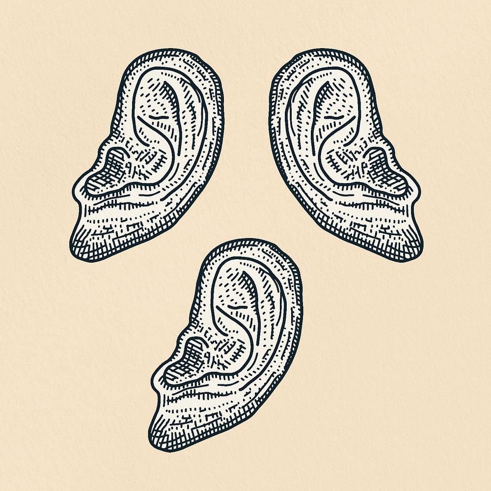 Ears Print Zoomed