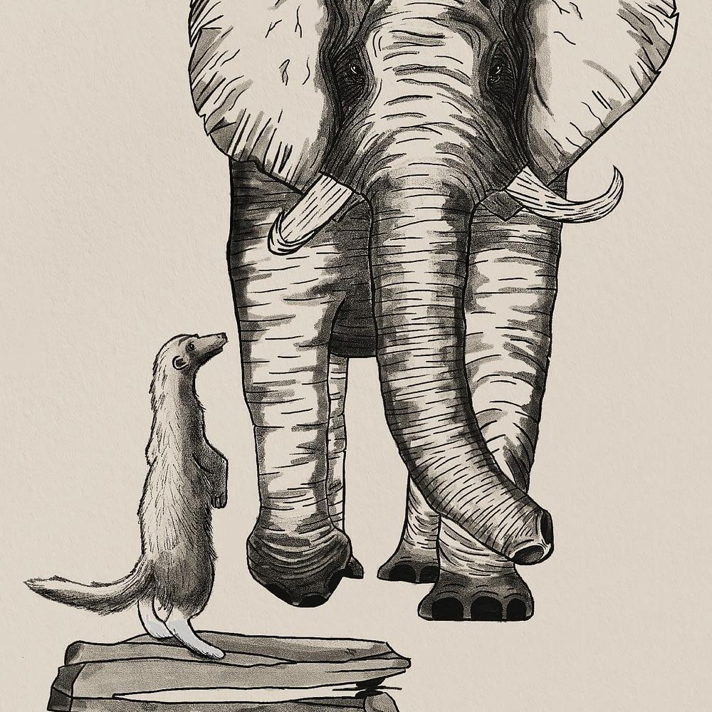 Elephant & Meerkat Print Zoomed