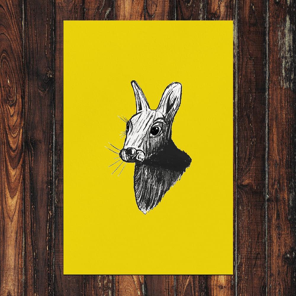 Rabbit Print 24x36