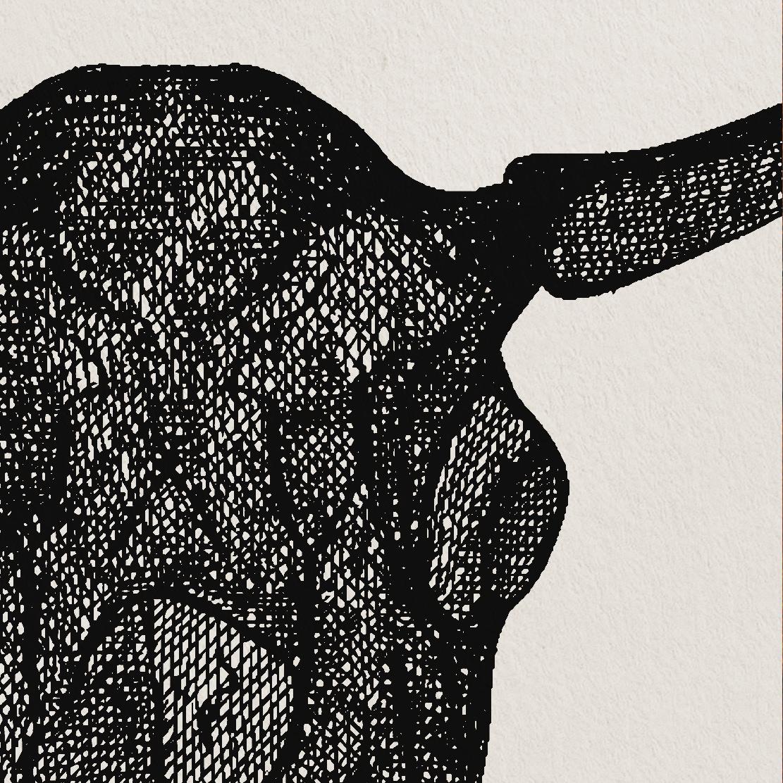 Animal Skull Print Zoomed