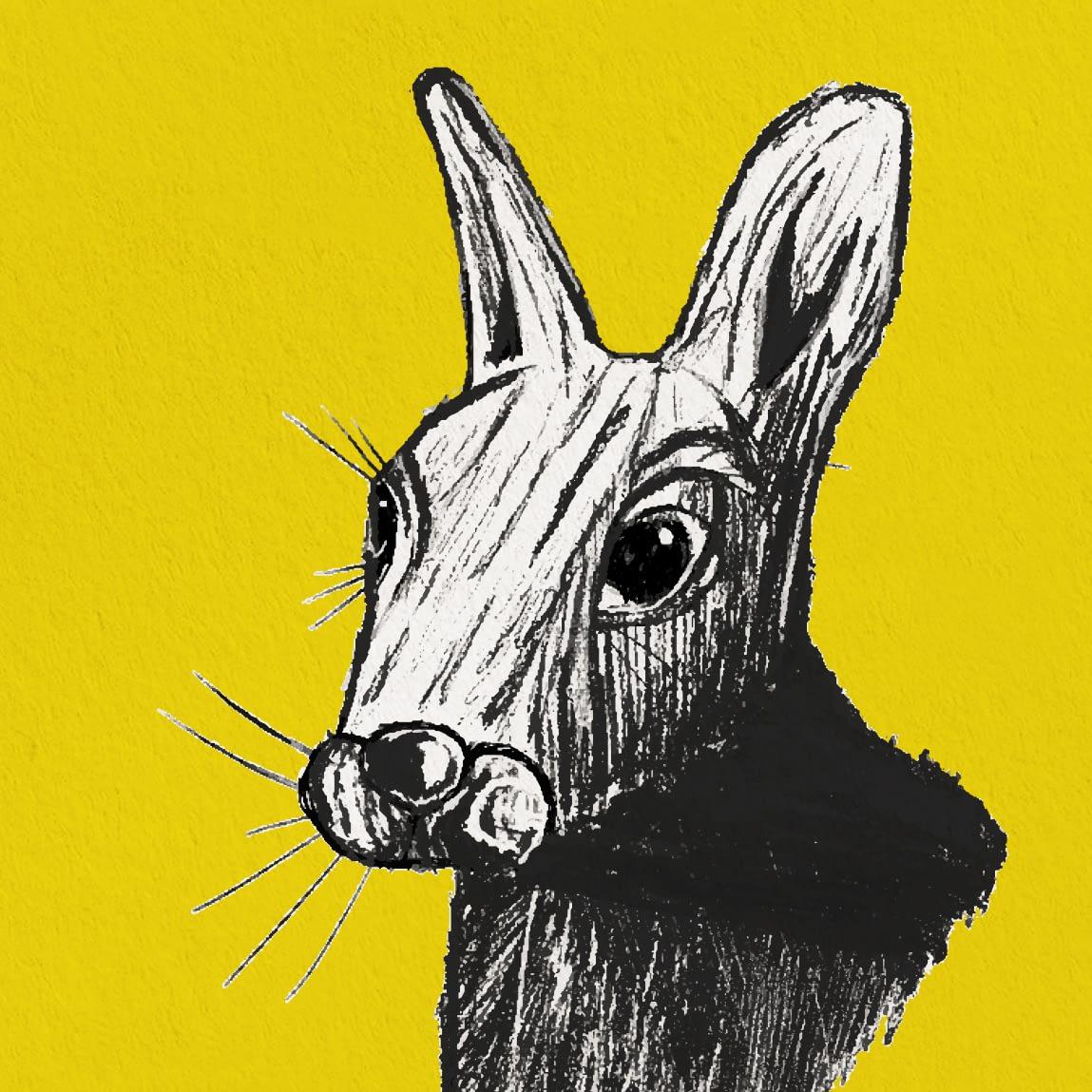 Rabbit Print Zoomed
